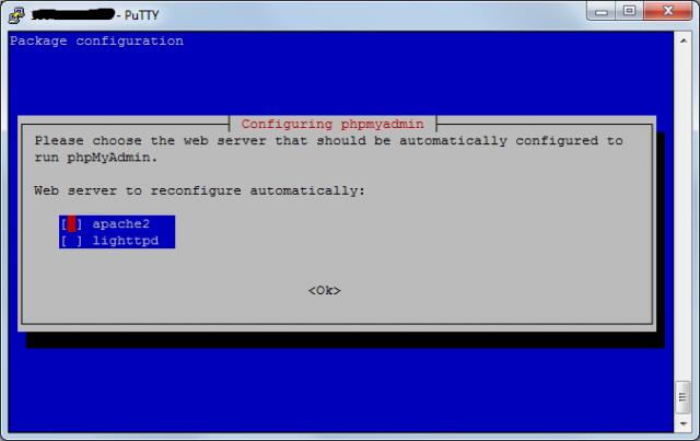 Выбираем тип web-сервера