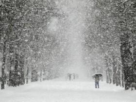 Хабаровск покрылся снегом