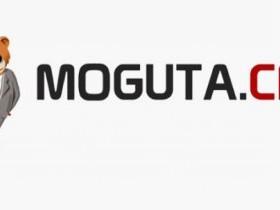 Moguta.CMS - новая CMS для создания интернет-магазинов. Интервью с Марком Авдеевым