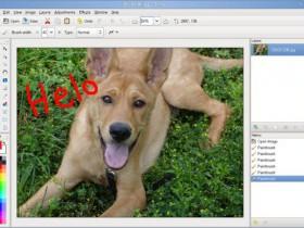 Pinta. Простой графический редактор для OS X