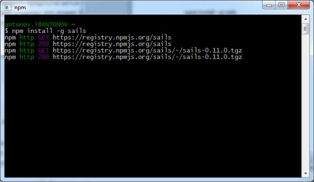 Рисунок 3. Установка sails.js с помощью NPM